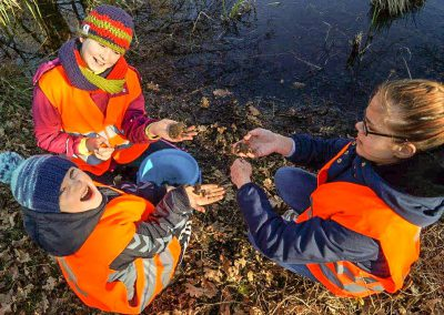 Junge Helfer am Krötenzaun
